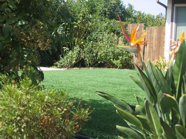 Fake Grass Yards : Back Yards  All Seasons Synthetic Turf  Artificial synthetic grass