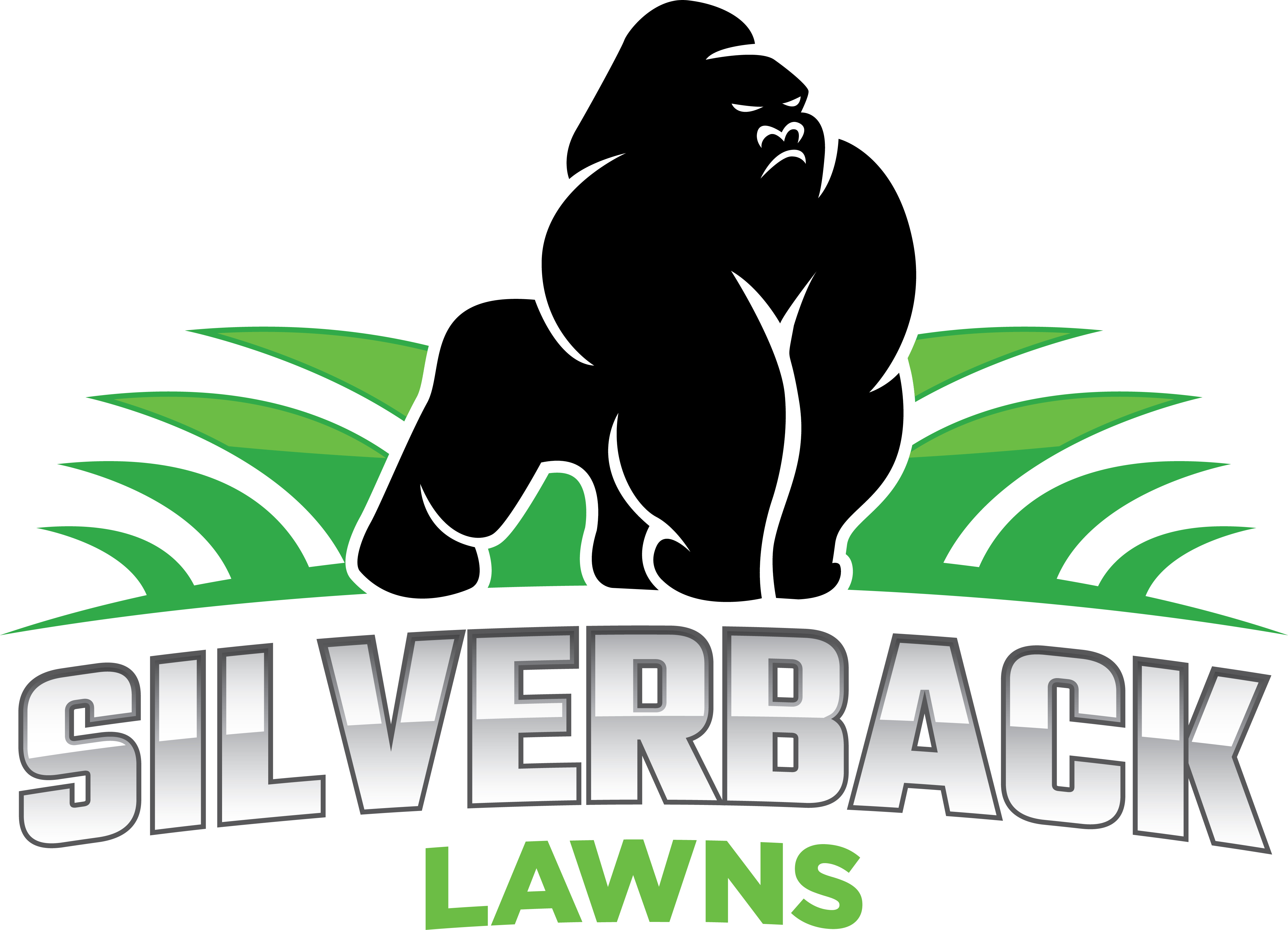 coming soon only two weeks to go for your pets silverback lawns - Silverback Gorilla Coloring Pages